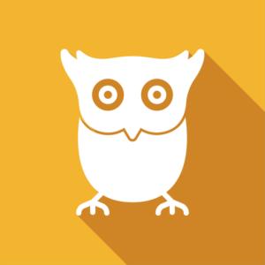 AMS owl logo